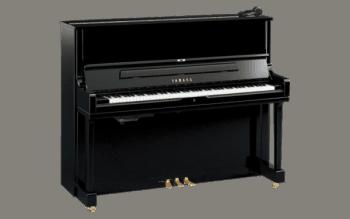 Speelmaand Piano @ Verzorgingshuis Bloemswaard | Hillegom | Zuid-Holland | Nederland
