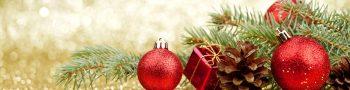 Kerstconcert ensembles + Kerst Projectorkest @ Fioretti College   Hillegom   Zuid-Holland   Nederland
